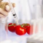 Гринпис обнародовал чёрный список производителей ГМ-продуктов…