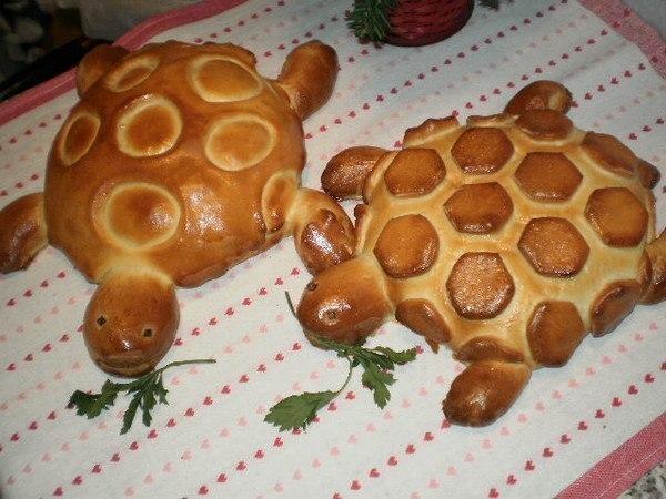 wpid JEmRIHvvs5c Печем черепах!