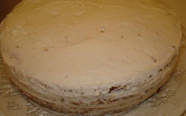 Торт Прага: лучший рецепт Пражского торта с фото | Чудо-Повар