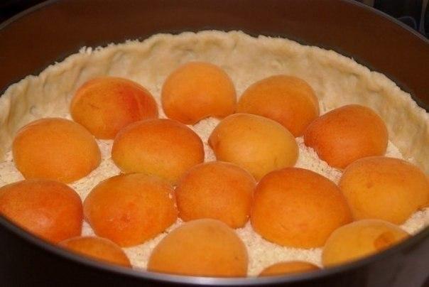 wpid tTEqsxVkzhI Творожный пирог с абрикосами
